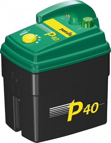 P40_1